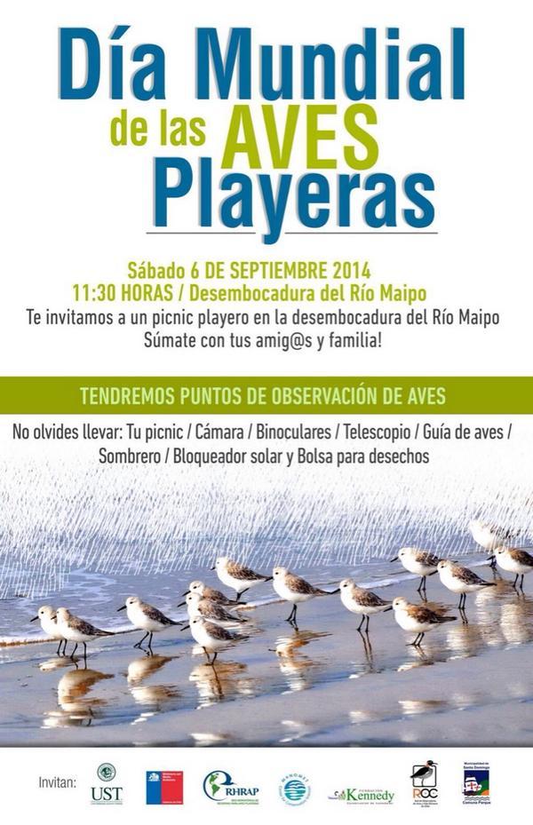 AvesPlayeras